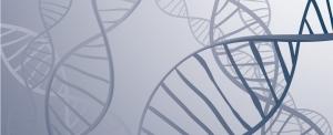 ADN-Background